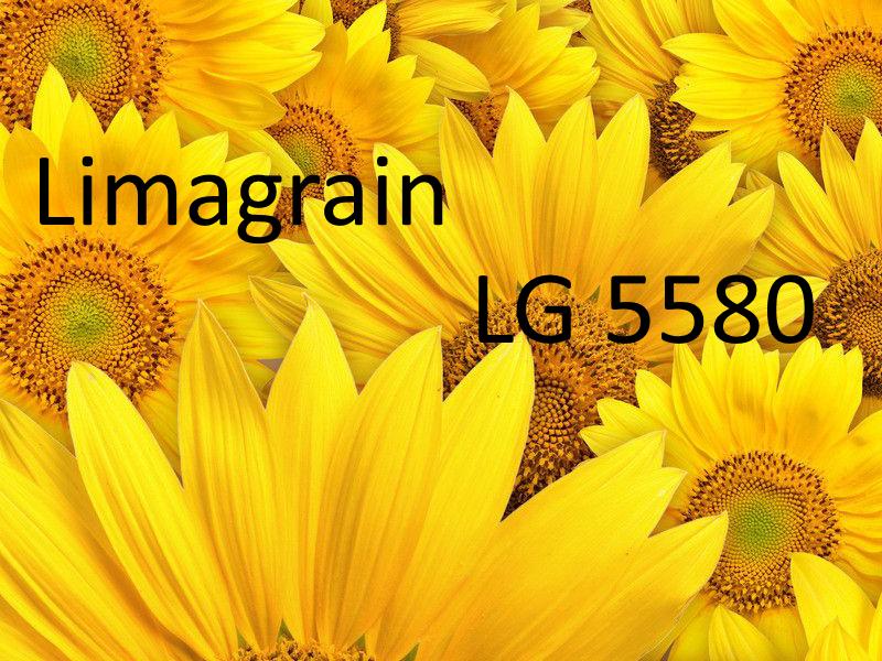 Семена подсолнуха Лимагрейн ЛГ 5580 (Новая Тунка) - Агро-патриот в Днепре