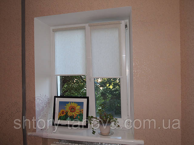 Рулонні штори на вікнах льон