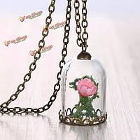Сухой цветок кулон ожерелье ретро старинные раковины стеклянная бутылка цепь