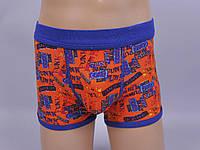Хлопковые трусы шорты для мальчиков Altedo (вешалка)