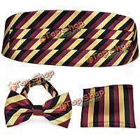 PenSee мужские галстуки формальный полоса предварительно привязал галстук-бабочку и Платок & набор кушак