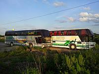 Транспортные услуги  пассажирские автобусные перевозки. Аренда автобуса. Заказ автобуса.