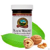 Грецкий (Черный) орех -Black Walnut - натуральное антипаразитарное и противоглистовое средство  NSP