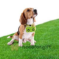 Держатель пакетиков для выгула собак Boom Dog Rocketdesign (Зеленый)