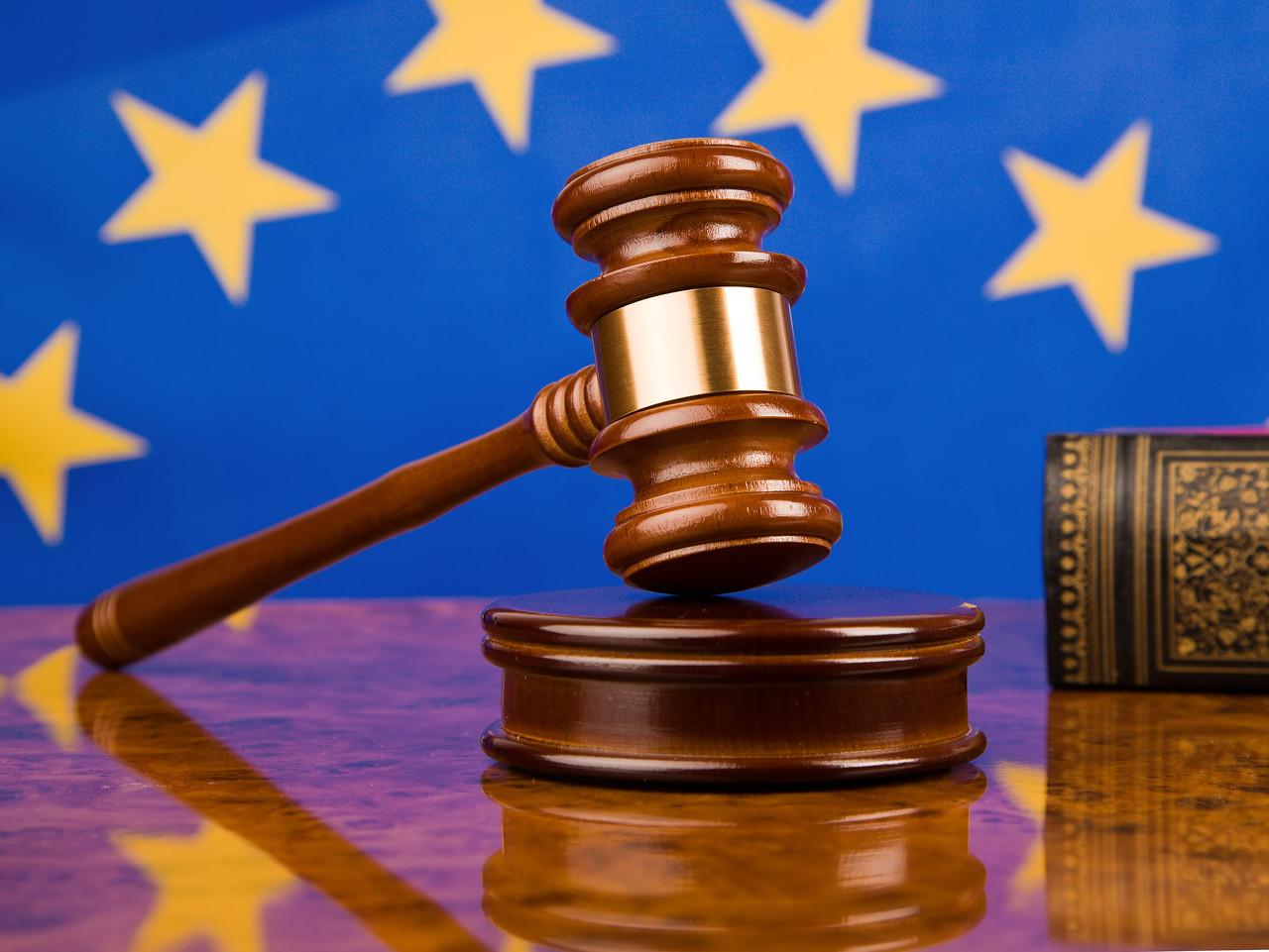 Жалоба в ЕСПЧ по административному делу - Центр оскарження судових рішень в Киеве