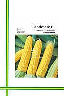 Семена Кукурузы Лендмарк F1( большая фасовка)20гр