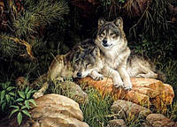Алмазная вышивка Дикие волки KLN 30 х 40 см (арт. FS244)