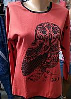 Модная кофта с рисунком 48-50р  , доставка по Украине