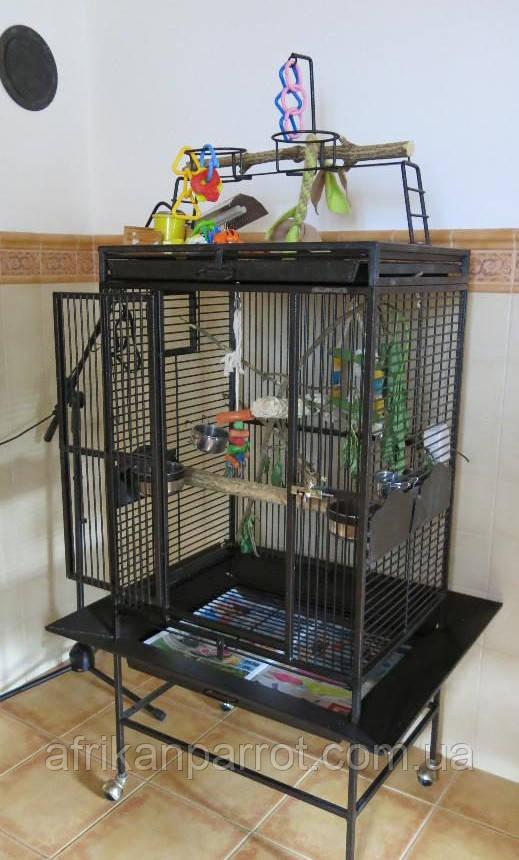 Вольер для попугаев 66*51*163 (King's Cages)