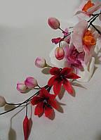 Сахарные цветы из мастики Ветвь Орхидеи с бутонами на заказ Харьков