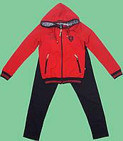Спортивный костюм для мальчика (146, 152)  Philipp Plein (Турция), фото 1