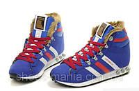 Зимние кроссовки Adidas Chewbacca синие