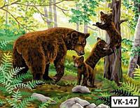 Картина на холсте по номерам VK147  40x30см