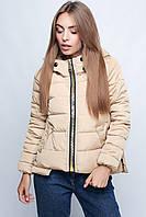 Куртка демисезонная 596 (46)