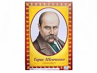 Портрет - Шевченко Т.Г.