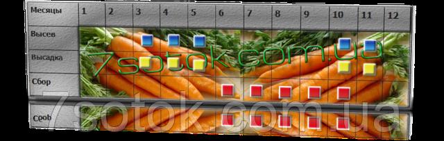 Посев-уборка моркови
