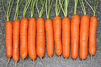 Семена моркови Нантская, 100г