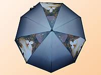Зонт женский Amico 346 с кошками полуавтомат Рисунок 2