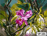 Картина на холсте по номерам VP 101 40x50см