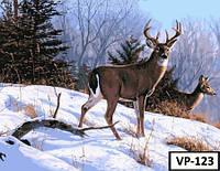 Картина на холсте по номерам VP 123 40x50см