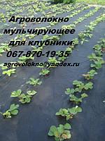 Агроволокно Premium-Agro 50 г/м² черное (3.2*50м) Польша, от сорняков, мульчирующее