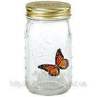 Бабочка в банке (Butterfly in a jar) на батарейках подарок девушке