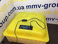 Инкубатор бытовой HHD 48 автомат , фото 1