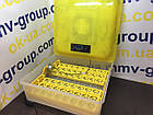 Инкубатор бытовой HHD 48 автомат , фото 3