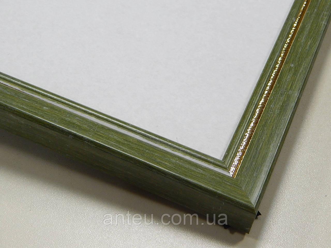 Рамка А4 (297х210).Рамка пластиковая 22 мм.Зеленый с серебрянной окантовкой.