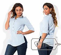Женская белая рубашка батал в голубую полоску . Арт-1730/41