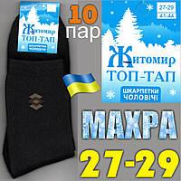 Носки мужские махровые Топ-Тап Житомир Украина  27-29р. НМЗ-0483