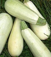 Семена кабачка Грибовский, 100г