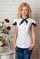 Офисная блузка 347СЛ