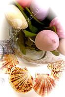 Раковина-декор для дома