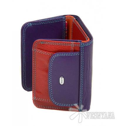Оригинальный кожаный кошелек Rainbow Dr.Bond WRS-7, фото 2