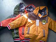 Куртка мальчик осень