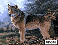 Картина на холсте по номерам VP 346 40x50см