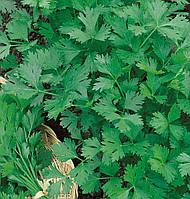 Семена петрушки Карнавал листовая, 100г