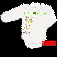 Детский боди с длинным закрытым рукавом р. 56 с начесом ткань ФУТЕР (байка) 100% хлопок ТМ Алекс 3188 Бежевый
