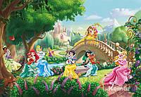 """Фотообои """"Дворец Принцессы Домашние животные"""" 368х254 см  , фото 1"""