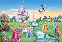 """Фотообои """"Замок принцесс"""" 368х254 см  , фото 1"""