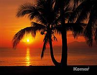 """Фотообои """"Восход солнца на пляже"""" 368х254 см  , фото 1"""