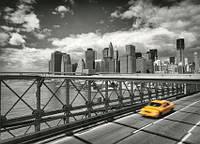 "Фотообои ""Такси в Бруклин"" 254х184 см"