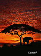 """Фотообои """"Африканский закат"""" 194х270 см  , фото 1"""