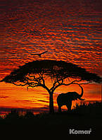 "Фотообои ""Африканский закат"" 194х270 см"