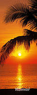 """Фотообои """"Пальмы, Пляж, Восход"""" 92х220 см"""