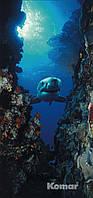 "Фотообои ""Акула"" 97х220 см"