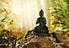 """Фотообои """"Будда"""" 184х127 см"""