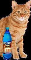 """Вода для котов """"Дивопрайд"""""""