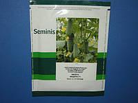 Семена огурца Мадита F1 1000с, фото 1